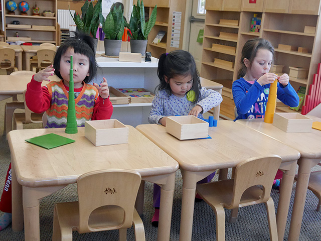 Role of a montessori teacher essay