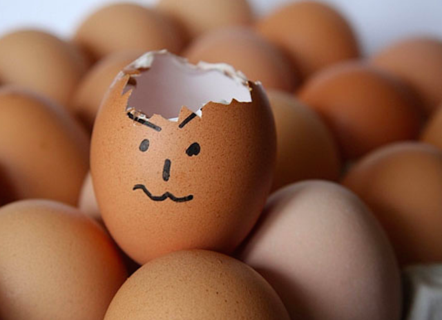 Egg Drop 2015