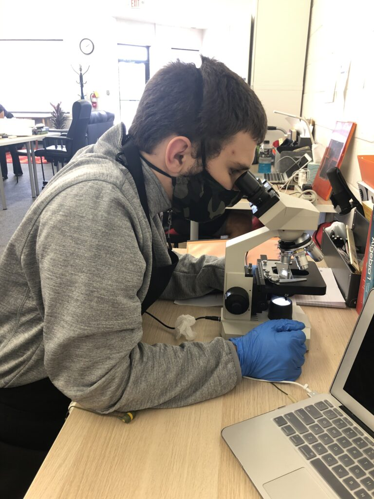 A student using a binocular microscope